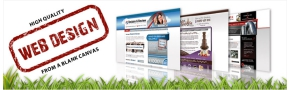 Creative web design essex by our team of experienced web designers.